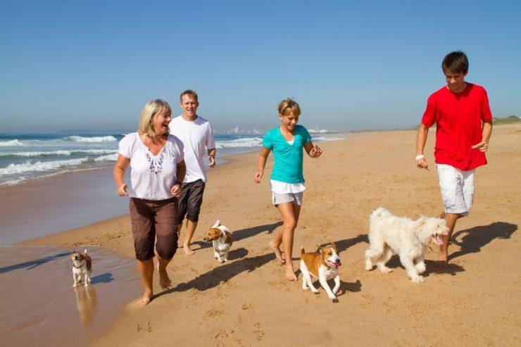 spiaggia per cani a Bibione Lignano