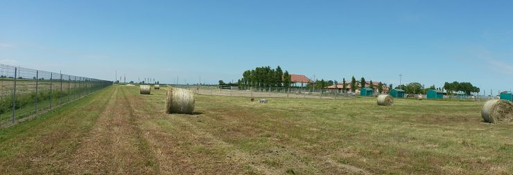 maneggio-virginia-ranch-bibione