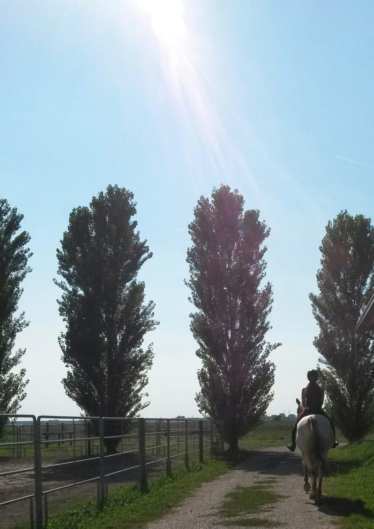 maneggio-virginia-ranch-bibione